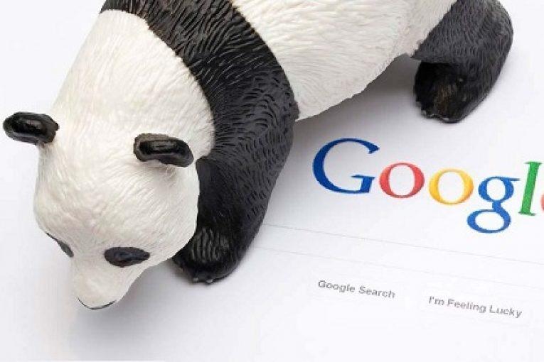 چگونه از جریمه کردن گوگل پاندا رهایی پیدا کنیم؟